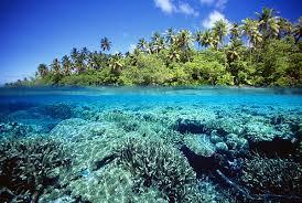 Micronesia Natural Wonders